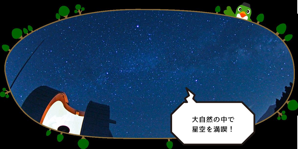 大自然の中で星空を満喫!